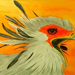 Secretary Bird #2  11x14, watercolor & pencil, aug 16, 2016 DSCN0309-A